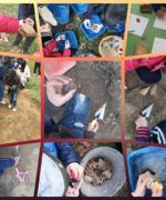 un giorno da archeologo